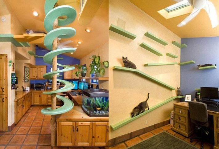 Incredible-Home-Catwalks-Make-for-Purr-fectly-Happy-Felines-s2