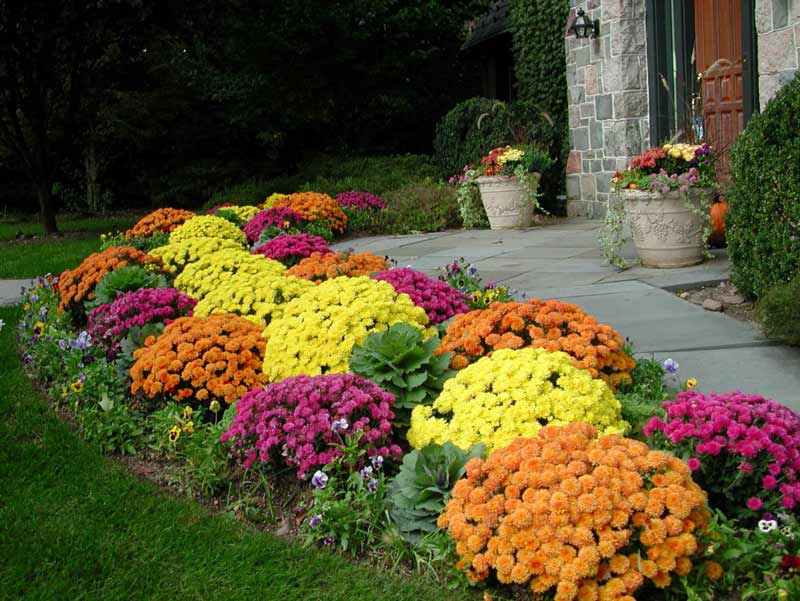 Big-Gardens-ideas-10