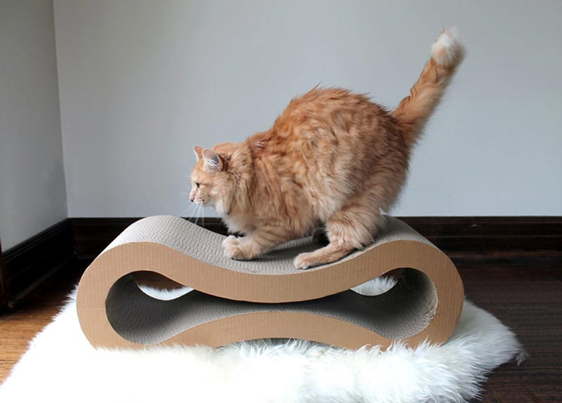 Cat-Furniture-Design-Ideas-3