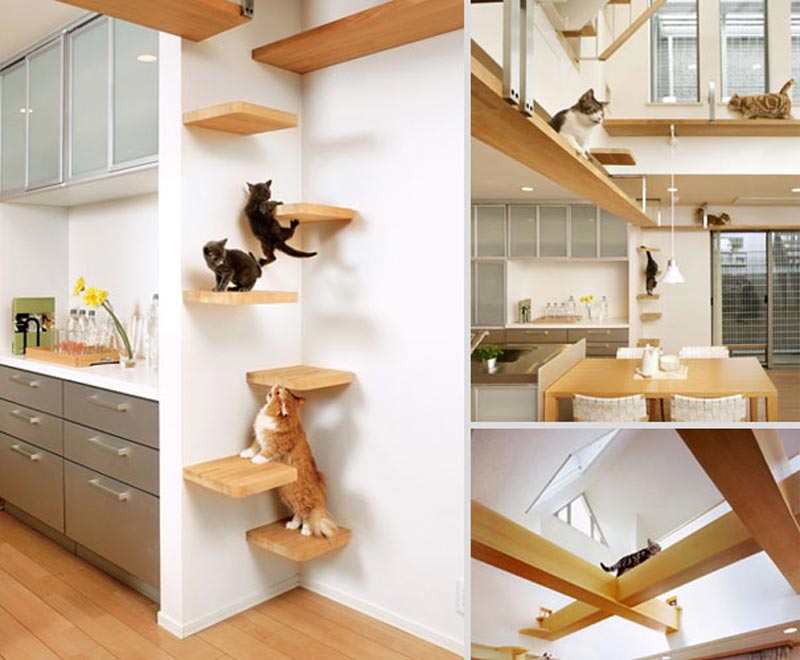 Cat-Furniture-Design-Ideas-7