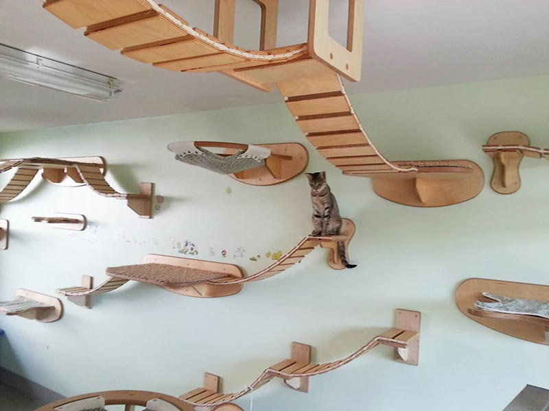 Cat-Furniture-Design-Ideas-9