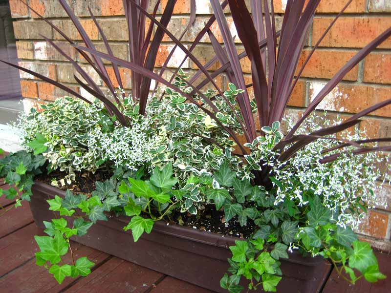 Container gardening ideas quiet corner for Garden ideas 2016