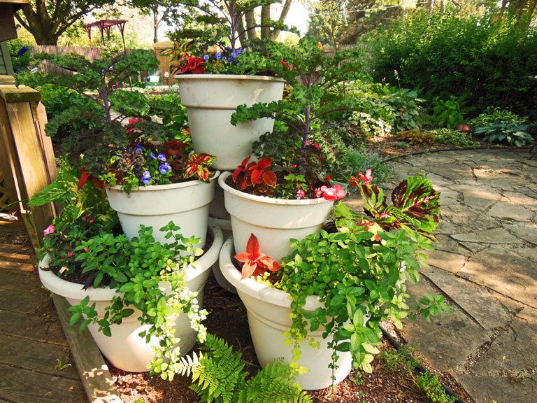 Quiet Corner Container Gardening Ideas: Container Gardening Ideas