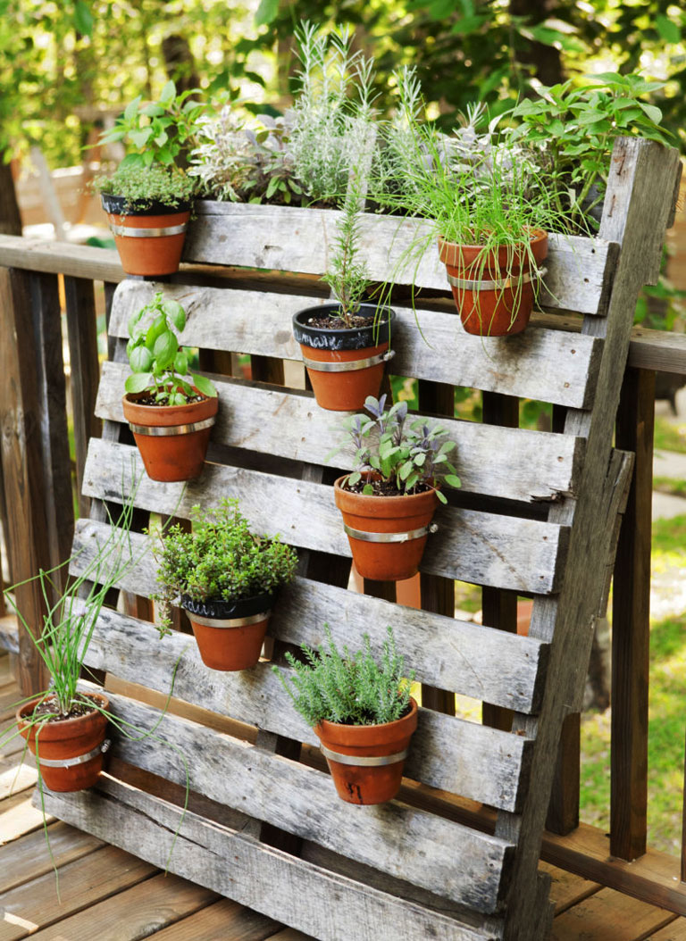 Container gardening ideas quiet corner for Garden planter ideas