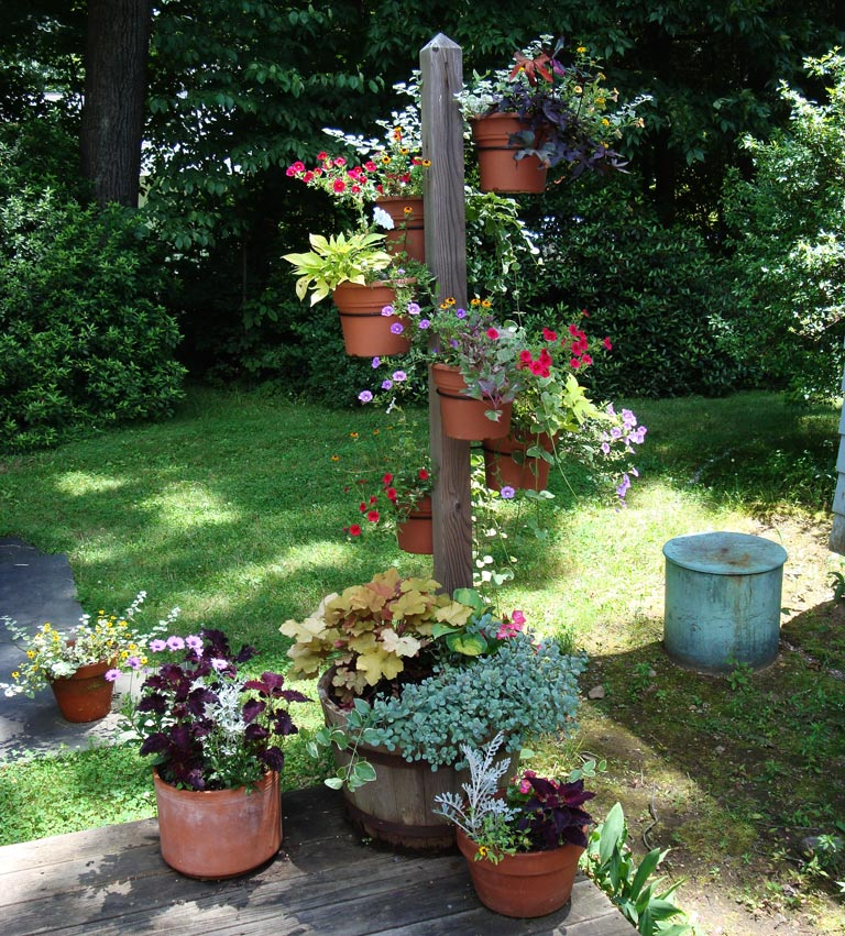 Container gardening ideas quiet corner for Garden planting designs