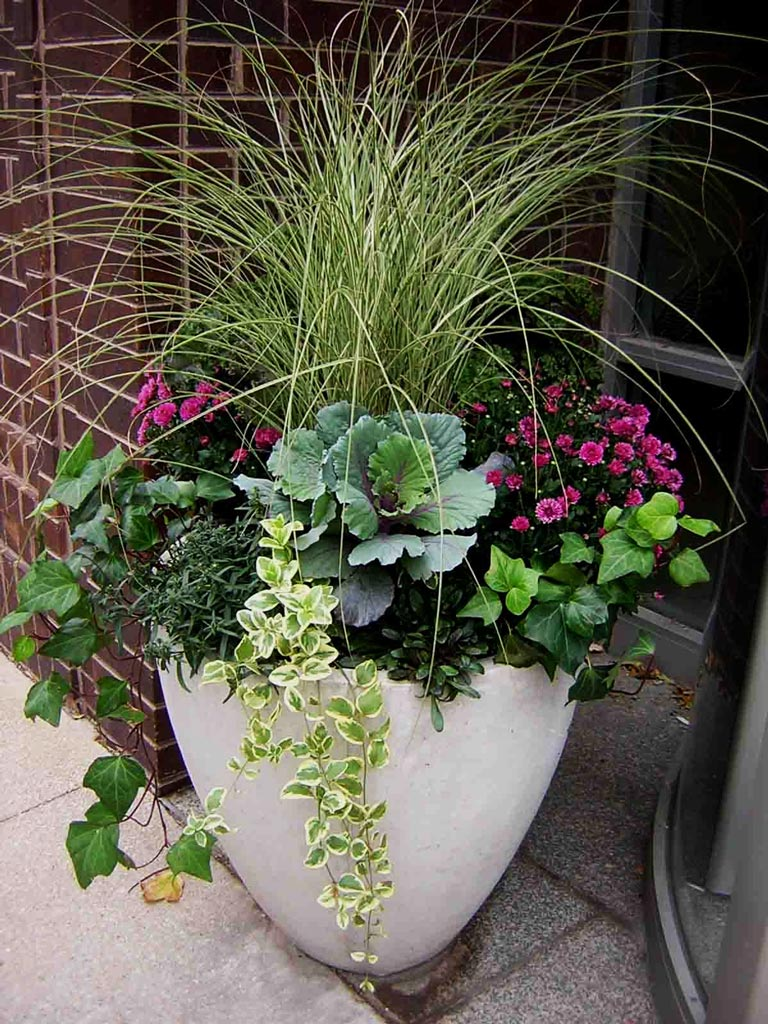 Container Gardening Ideas - Quiet Corner