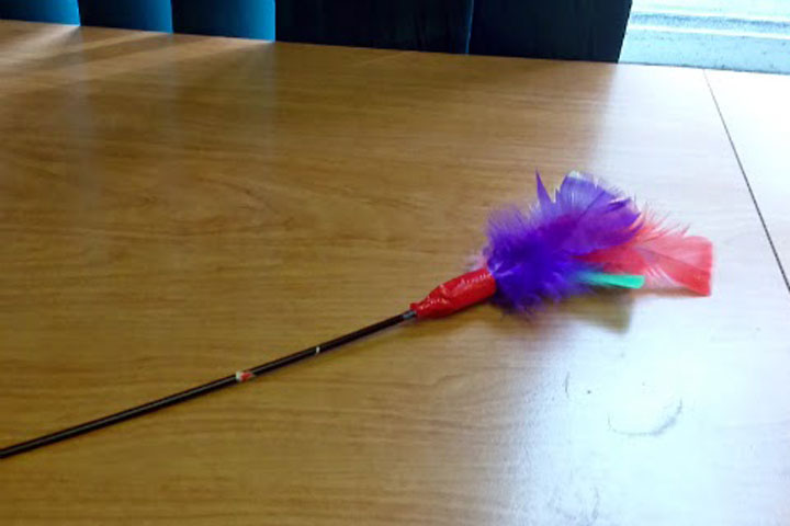 DIY Toys for Cats - Refurbished Feather Wand