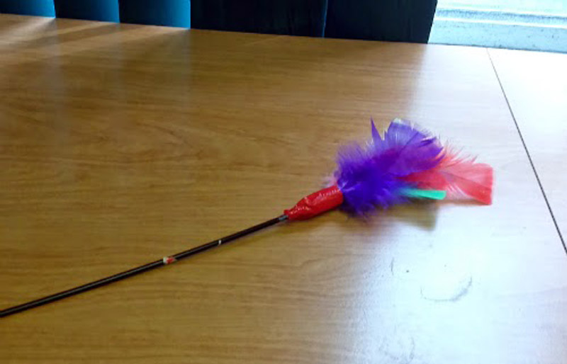 Refurbished Feather Wand