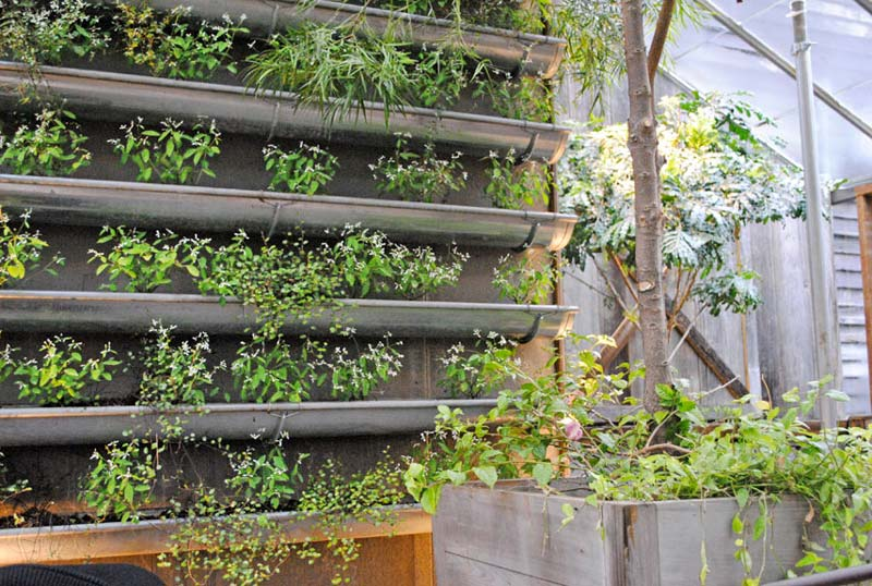 vertical vegetable garden ideas quiet corner