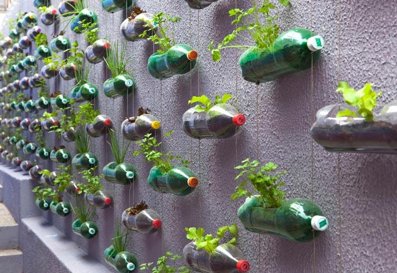 Quiet Corner Vertical Vegetable Garden Ideas Quiet Corner