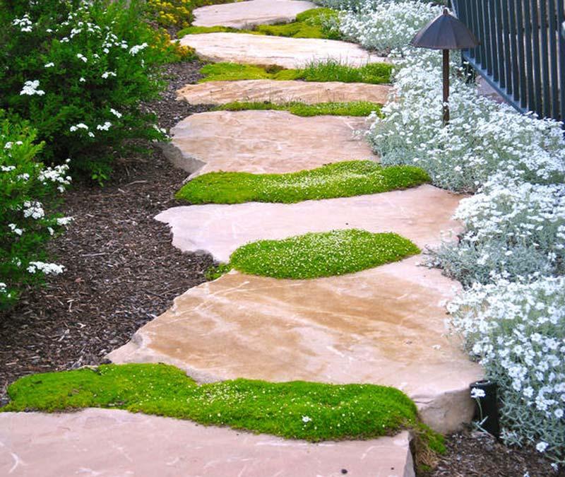 40 Different Garden Pathway Ideas: Quiet Corner:Walkways And Garden Path