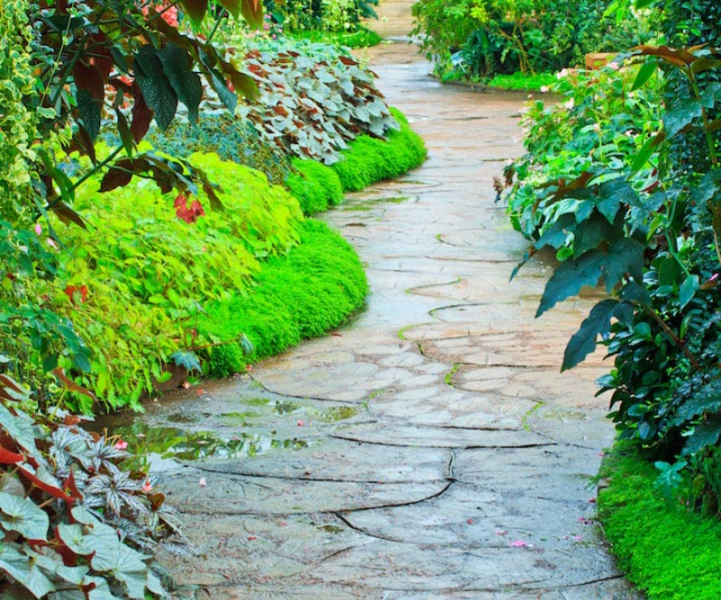 Walkways and Garden Path