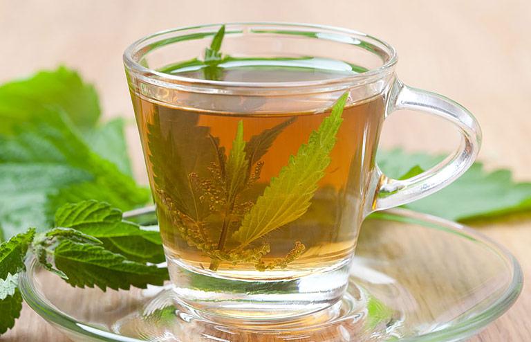 Health Benefits of Nettle Tea - Quiet Corner