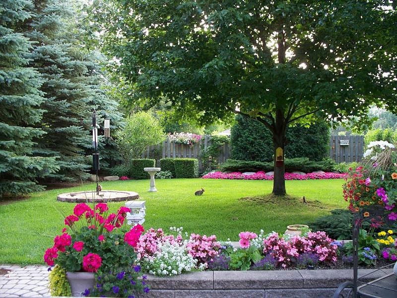 Backyard landscape design ideas quiet corner for Garden design visualiser