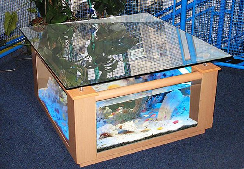 Beautiful Coffee Table Aquariums (1)