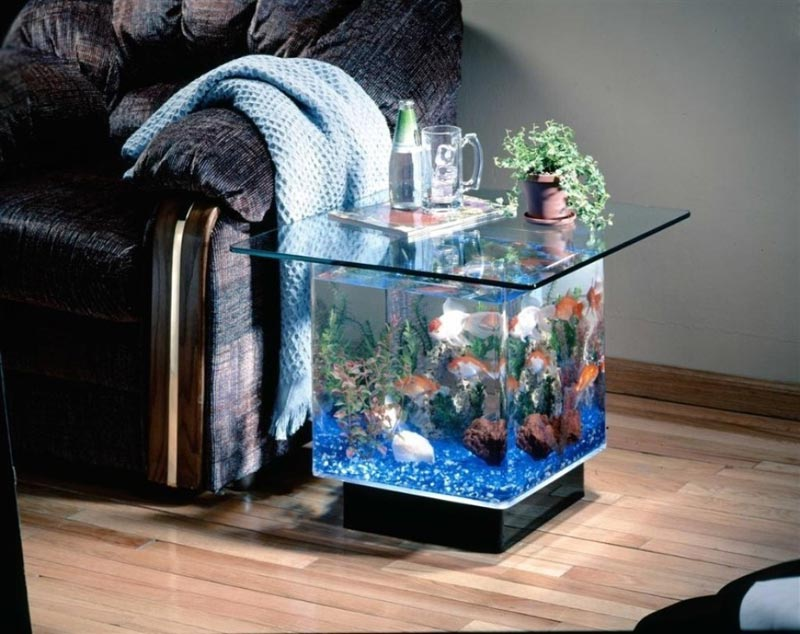 Beautiful Coffee Table Aquariums (10)