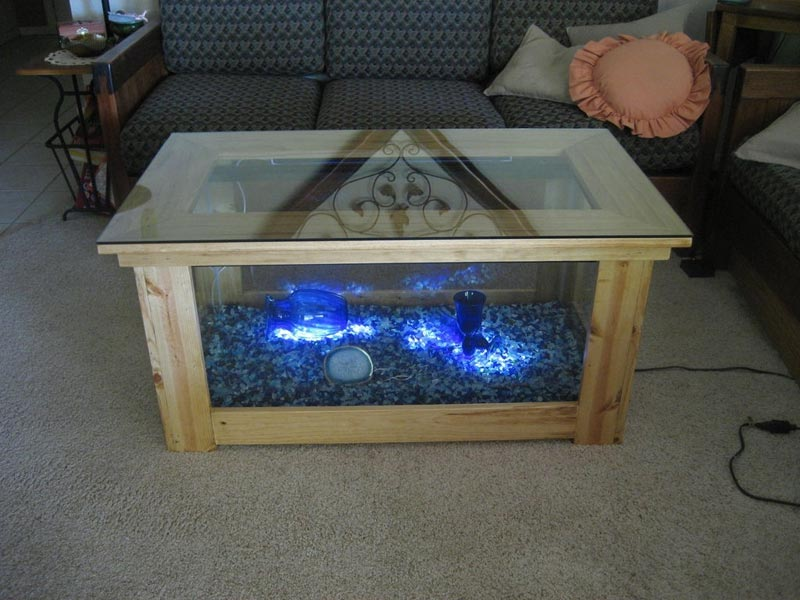 Beautiful Coffee Table Aquariums (13)