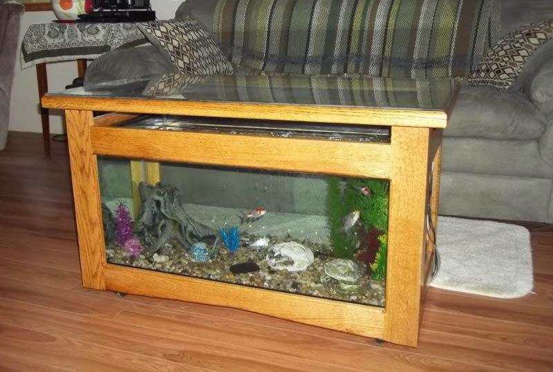 Beautiful Coffee Table Aquariums (15)