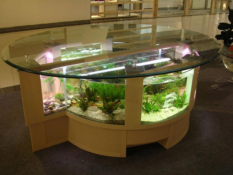 Beautiful Coffee Table Aquariums (17)