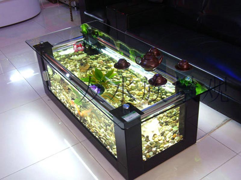 Beautiful Coffee Table Aquariums (19)