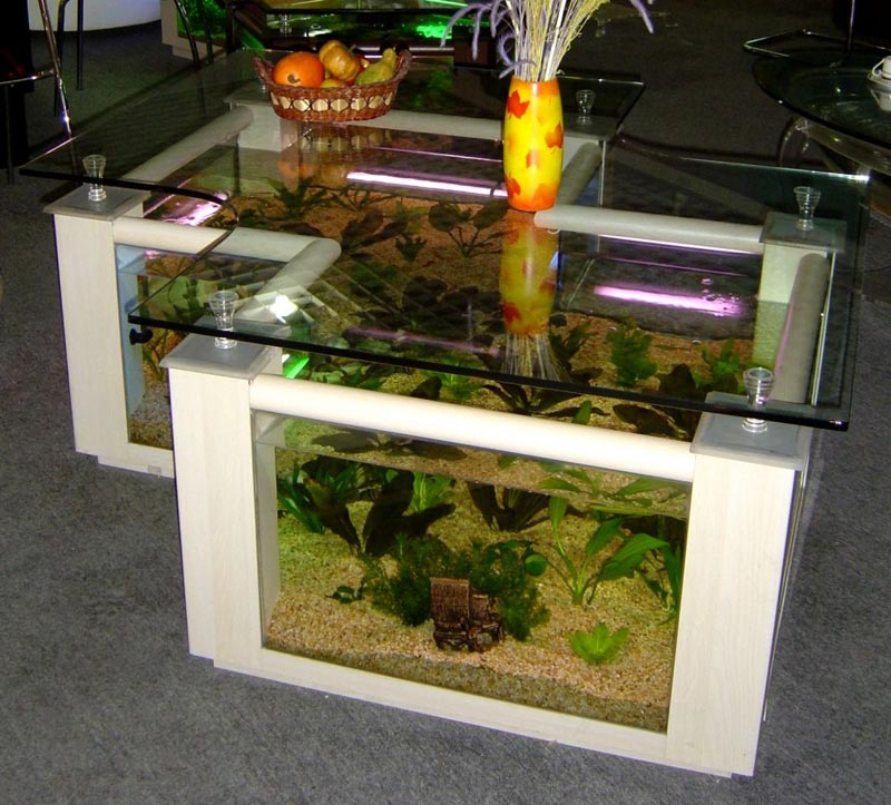 Beautiful Coffee Table Aquariums (2)