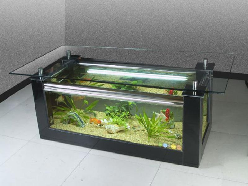 Beautiful Coffee Table Aquariums (20)