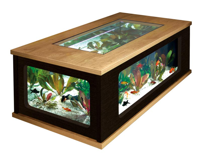 Beautiful Coffee Table Aquariums (22)