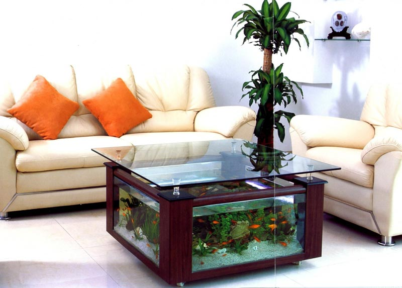 Beautiful Coffee Table Aquariums (23)