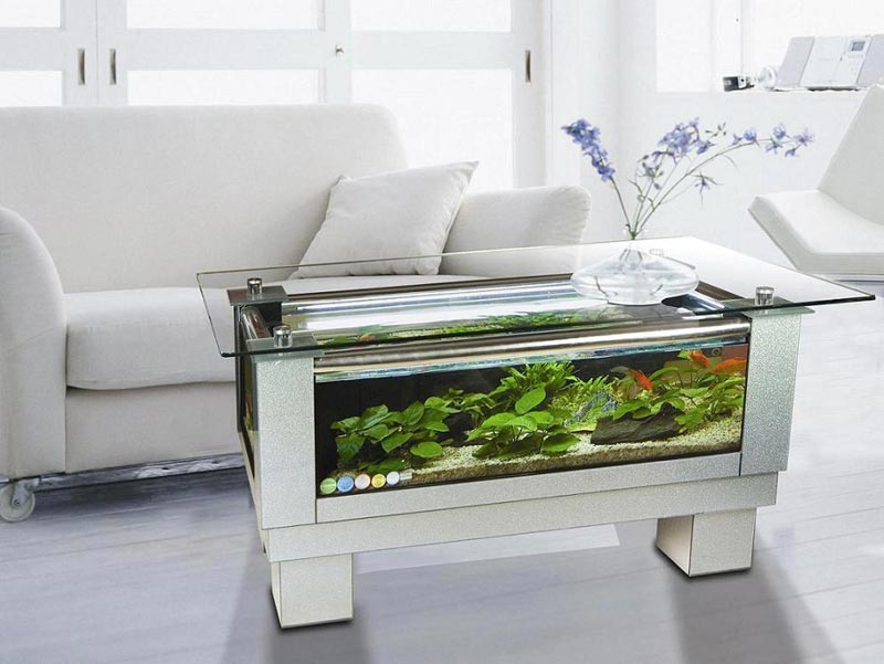Beautiful Coffee Table Aquariums (24)