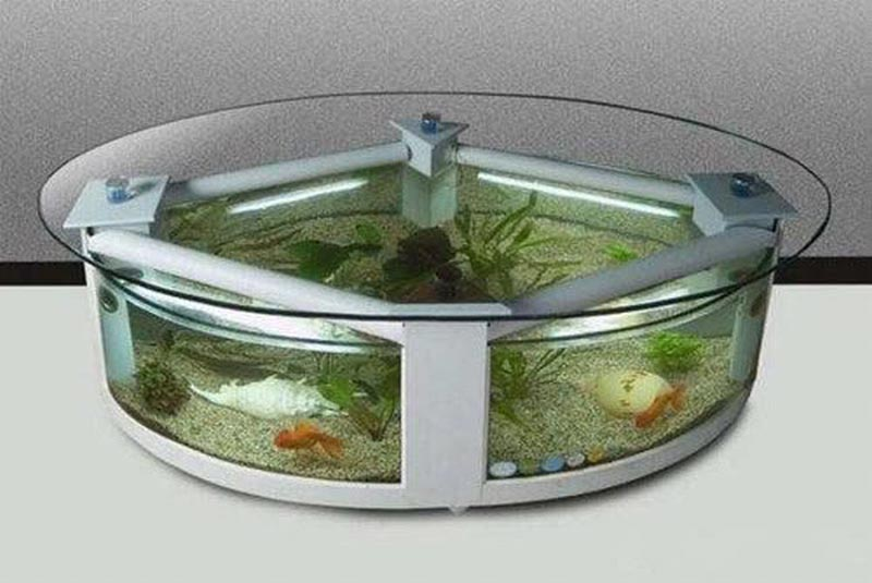 Beautiful Coffee Table Aquariums (25)