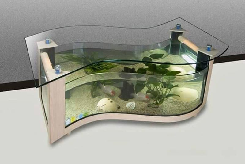 Beautiful Coffee Table Aquariums (26)