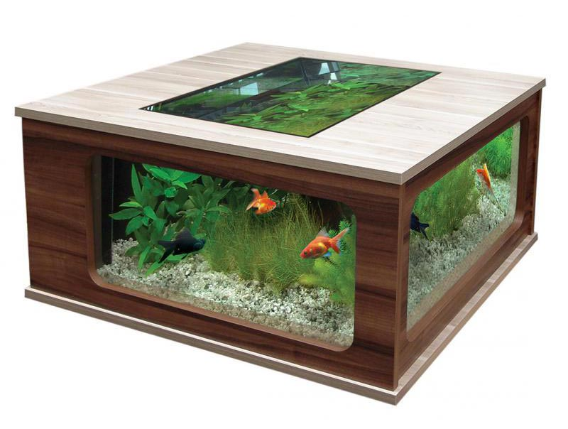 Beautiful Coffee Table Aquariums (27)