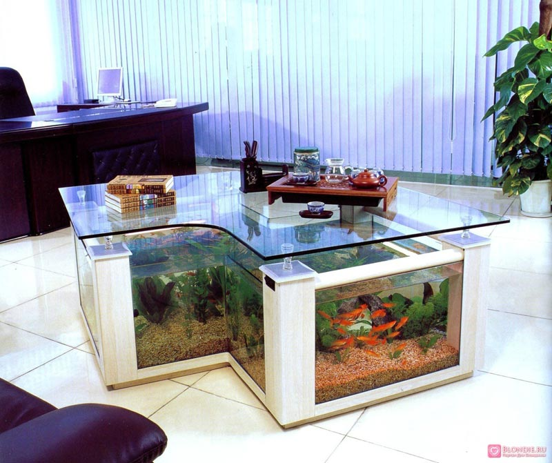 Beautiful Coffee Table Aquariums (3)