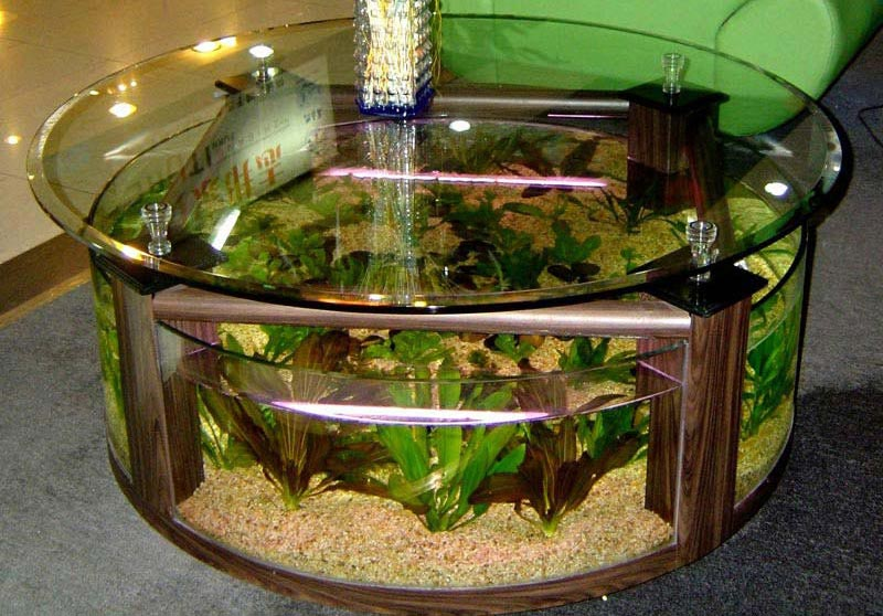 Beautiful coffee table aquariums quiet corner Beautiful aquariums for home