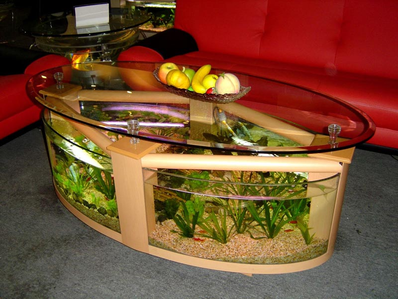 Beautiful Coffee Table Aquariums (5)