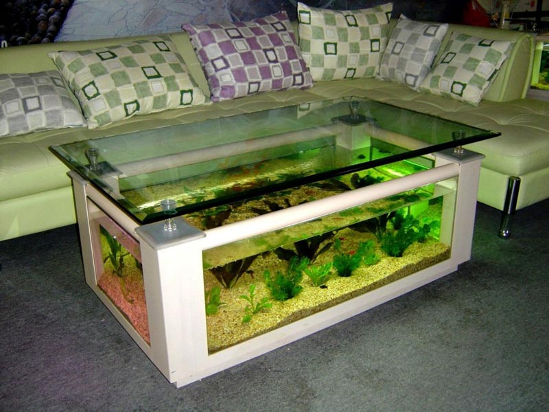 Beautiful Coffee Table Aquariums (7)