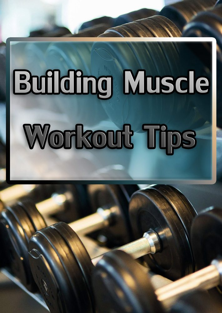 Building Muscle – Workout Tips
