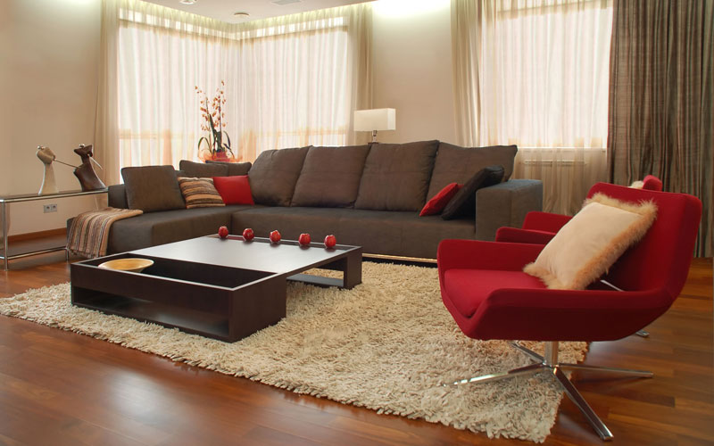 Carpet Ideas and Pictures (1)