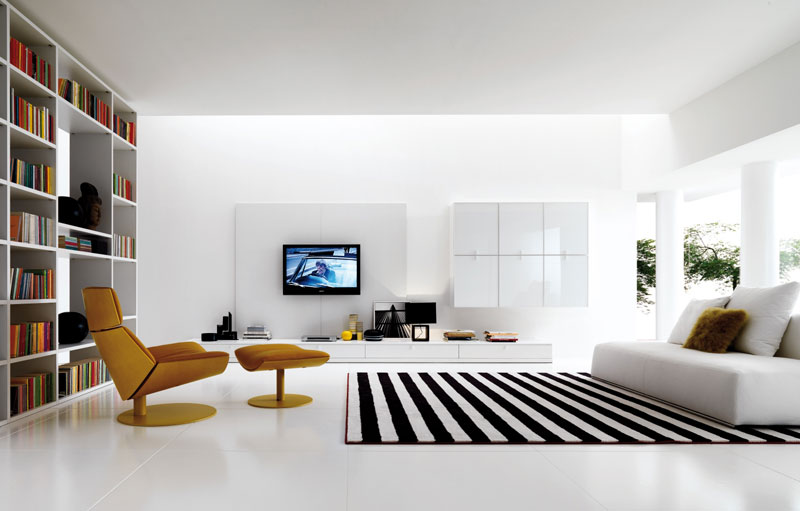 Carpet Ideas and Pictures (4)