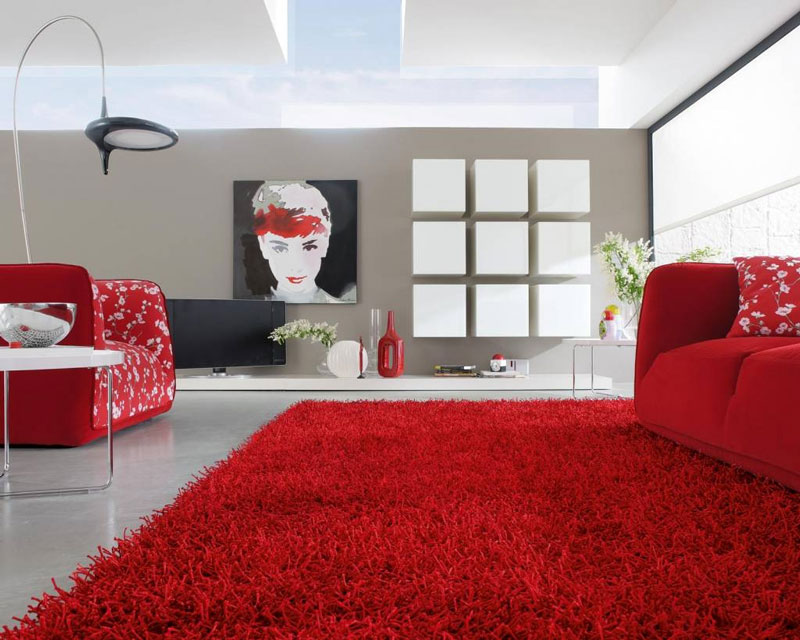Carpet Ideas and Pictures (9)