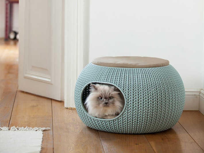 Cat Furniture Design Ideas