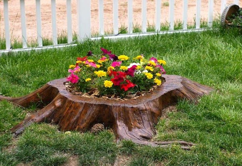 DIY Garden Projects and Ideas (10)