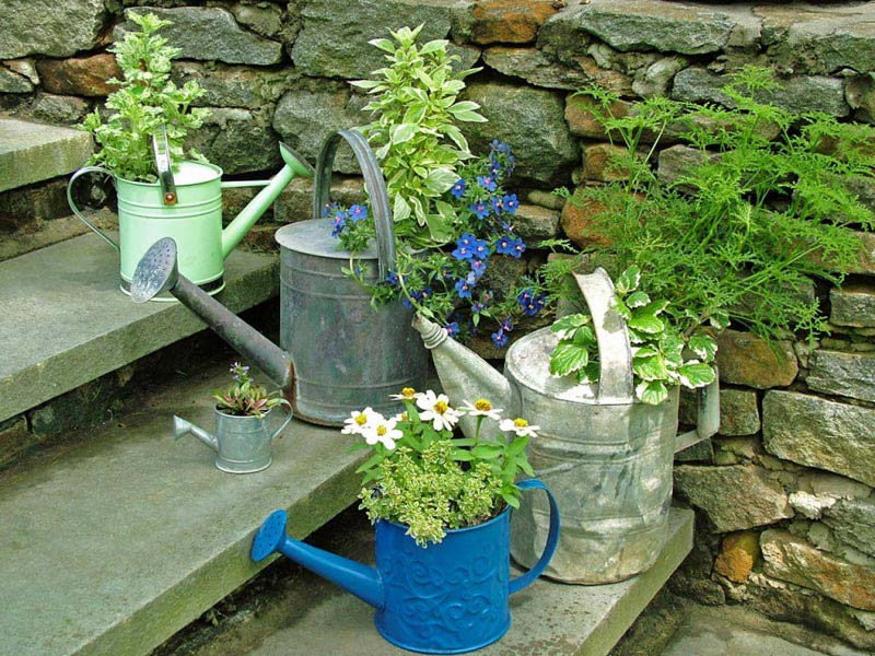 DIY Garden Projects and Ideas (11)