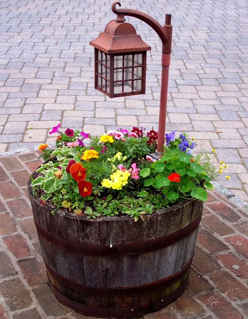DIY Garden Projects and Ideas (12)