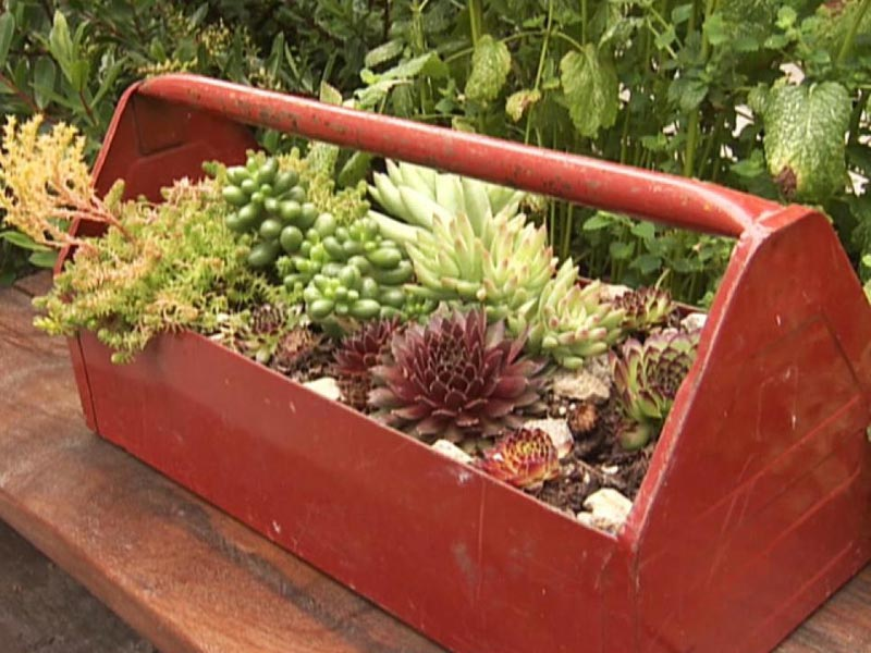 DIY Garden Projects and Ideas (2)