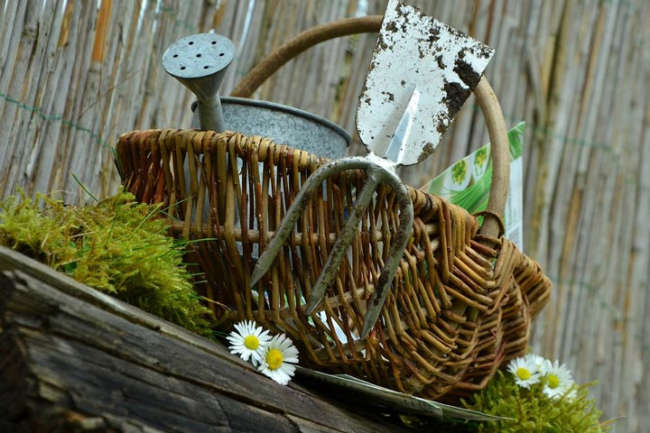 Gardening as a Healer
