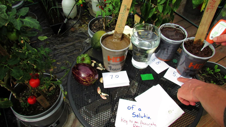 How To Test pH Level In Soil