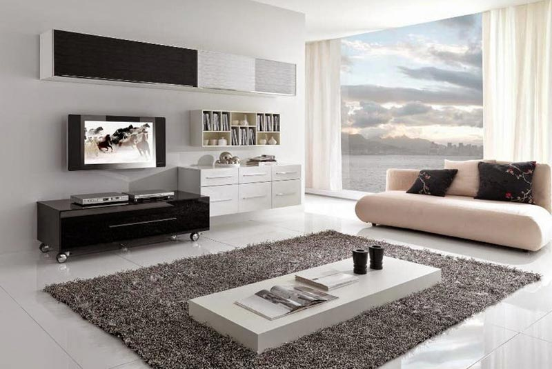 Living Room Carpet Ideas and Photos (15)