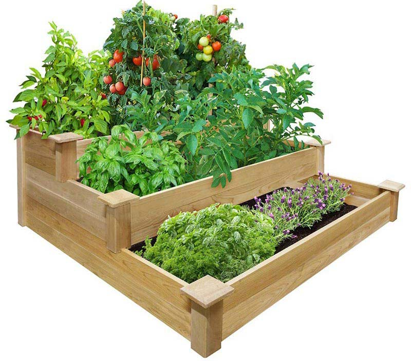 Vegetable gardening with raised beds quiet corner for Raised vegetable garden