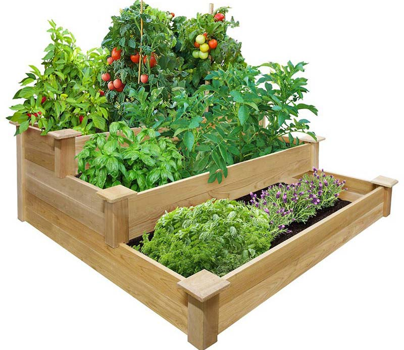 Vegetable Gardening with Raised Beds (13)